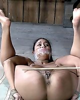 Jade Horny for Pain